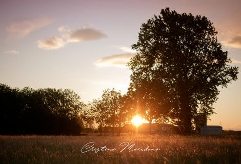 FamilyKids_esterna_tramonto_CristinaMoxedano001